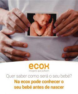 ecox-graficas-Julio-2020-PT-07